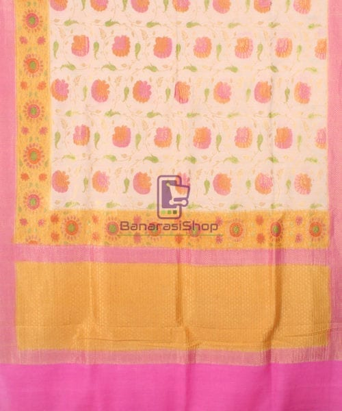 Pure Banarasi Muga Silk Handpainted Jaal Saree in Beige 5