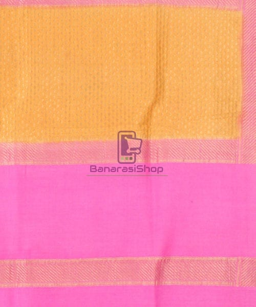 Pure Banarasi Muga Silk Handpainted Jaal Saree in Beige 7
