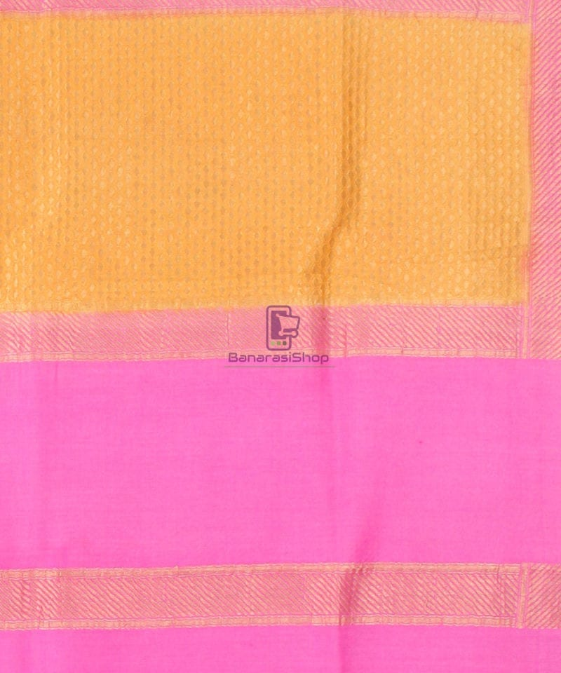 Pure Banarasi Muga Silk Handpainted Jaal Saree in Beige 4